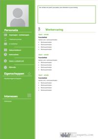 cv-sjabloon-functioneel-beheerder-1